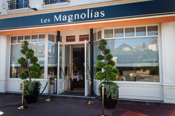 Les Magnolias_1400px